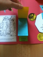 lapbook exposé dieux grecs mythologie