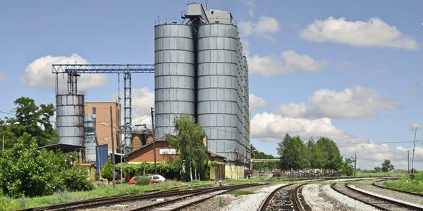 train&cereales